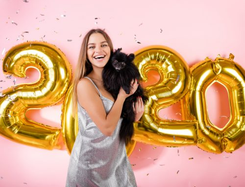 7 Resolutions to Keep Your Pet Healthy in 2020